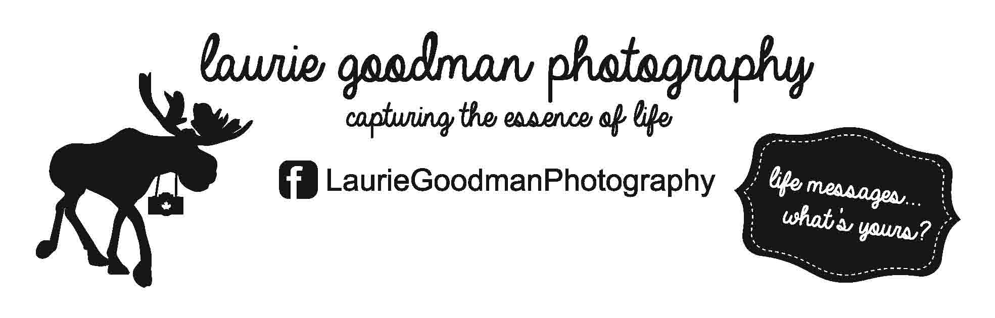 Laurie Goodman Photography